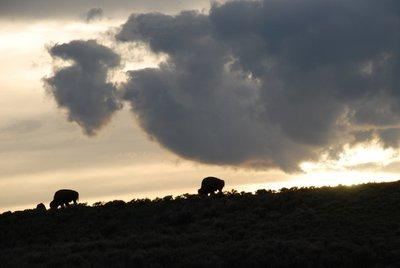 G_nbat_m_nda_bizonlar.jpg