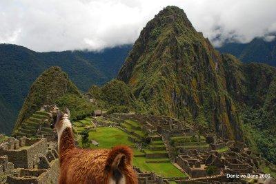 Machu_Picchu_7.jpg