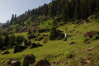 ayder_03_06_2010__73_.jpg