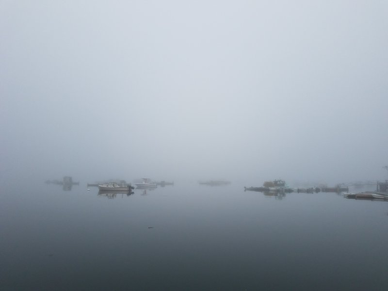 Bass Harbor in the Fog