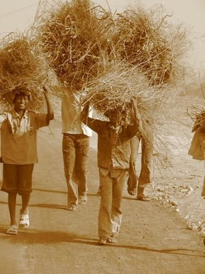 Children at Work--- Rural charm ! Gurgaon