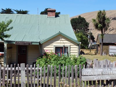 Flea Bay Hut, Banks Peninsula Walk