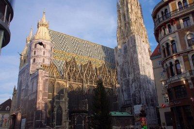 AUS391_Ste..Vienna_.jpg