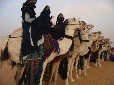 camels festival