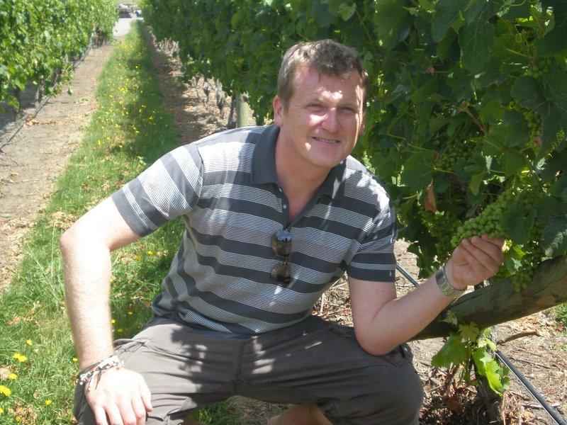 Sileni  Estates Winery, Hawkes Bay
