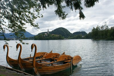 Swan boats at Lake Bled