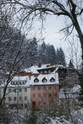 houses 2 of triberg