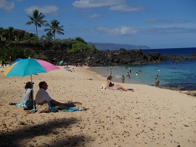 My turtle beach