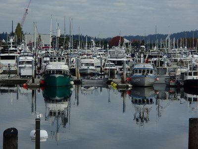 boats in Anacortes