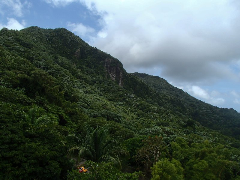 large_El_Yunque_..ry__1_of_1_.jpg