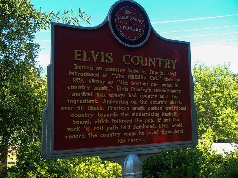 large_Elvis_country__1_of_1_.jpg