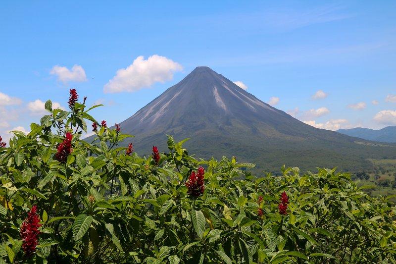 large_I_just_lov..nal_Volcano.jpg