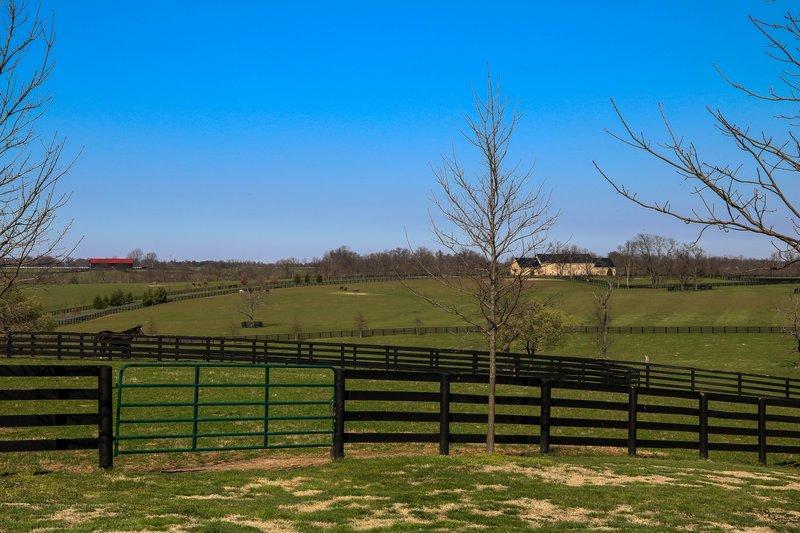 large_bluegrass_..ry__1_of_1_.jpg