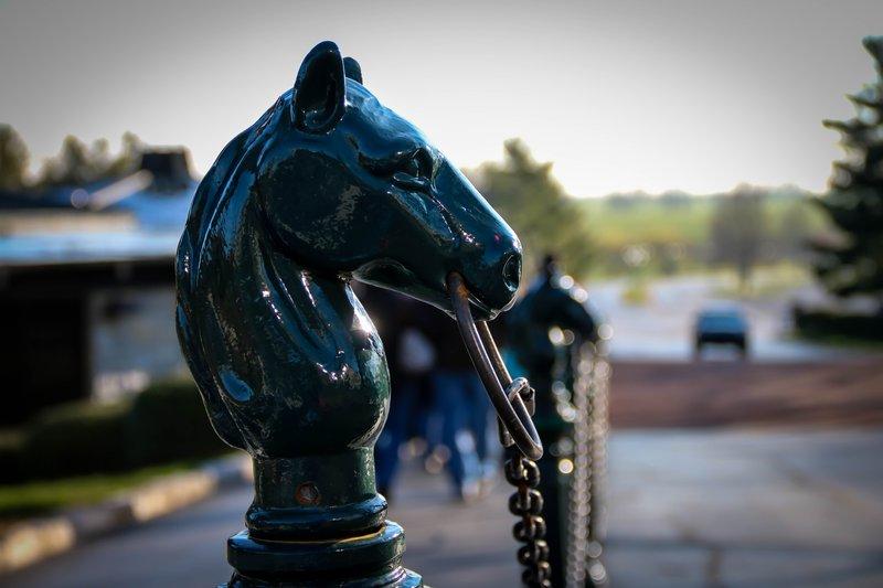 large_horse_head..ng__1_of_1_.jpg