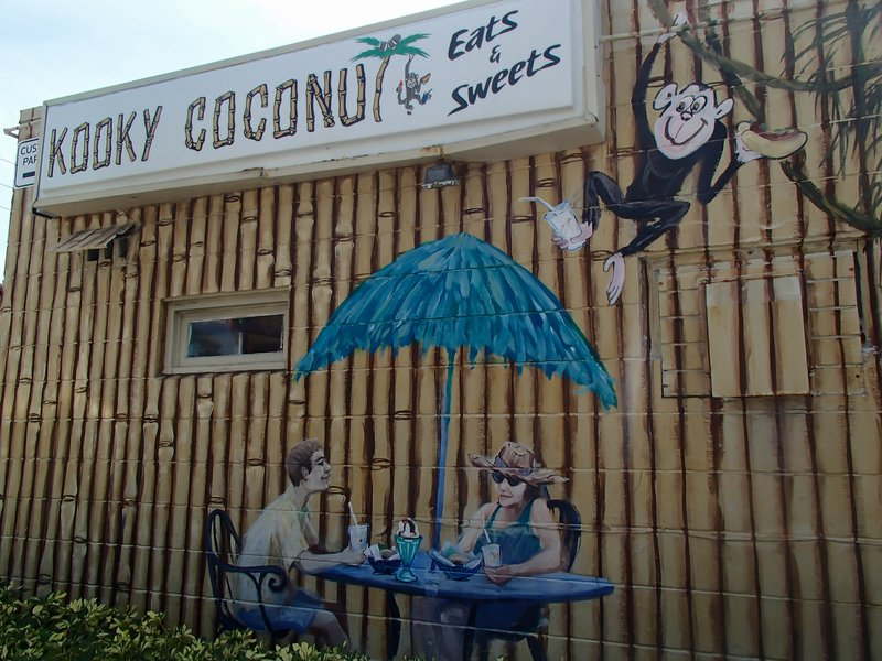 large_kooky_coconut__1_of_1_.jpg
