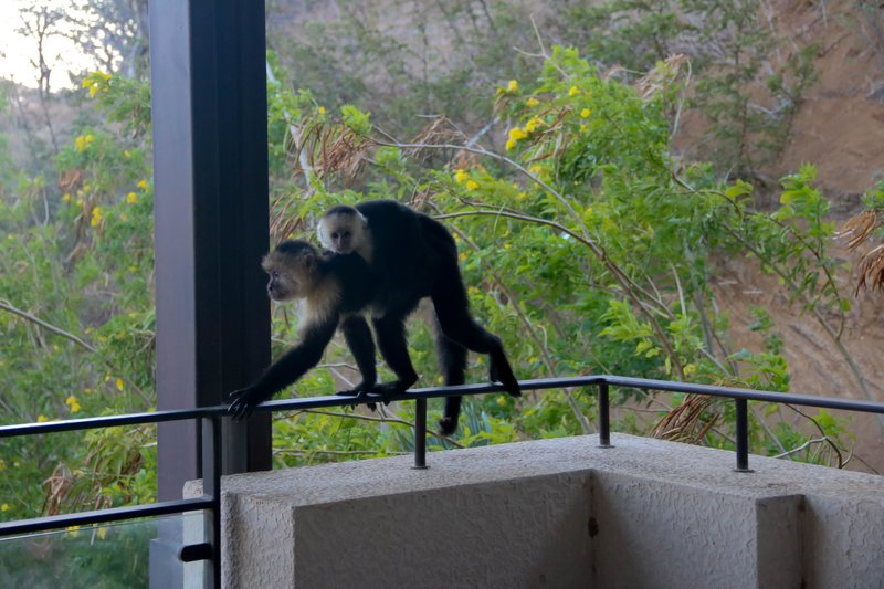 large_mom_and_ba..our_balcony.jpg
