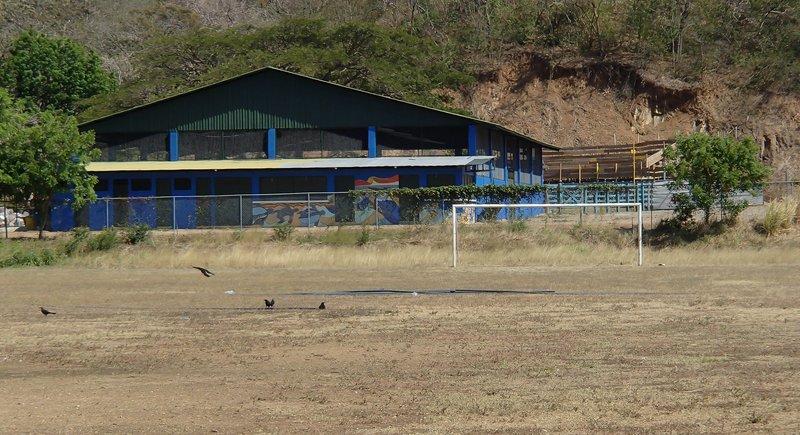 large_soccer_field.jpg