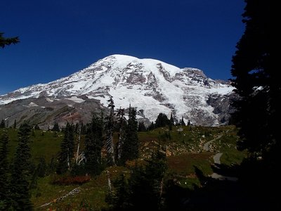 more views of Mt Ranier