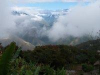 Bolivia_Coroico__16_.jpg