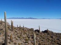 Bolivia_Uy..1__107_.jpg