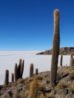 Bolivia_Uy..1__153_.jpg