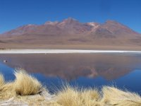 Bolivia_Uy..2__101_.jpg