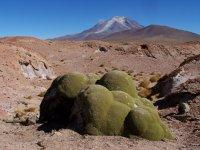 Bolivia_Uy..2__197_.jpg