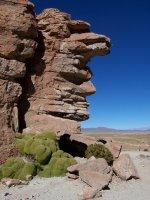 Bolivia_Uy.._3__82_.jpg