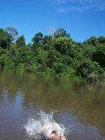 Colombia_Amazon_2.jpg