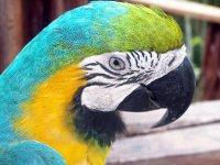 Colombia_Amazon__113_.jpg