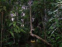 Colombia_Amazon__41_.jpg