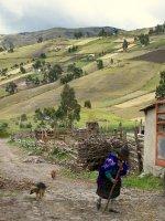 Ecuador_Ti..arm__9_.jpg
