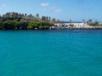 Galapagos_..anta_Fe.jpg