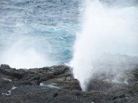 Galapagos_..d_2__9_.jpg