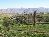 Peru_Arequipa__39_.jpg