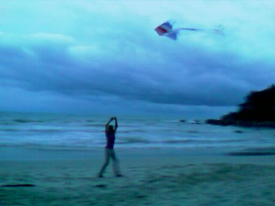 kite-flying.jpg