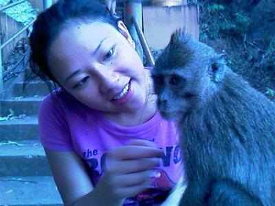 lim-monkey-1__Medium_.jpg