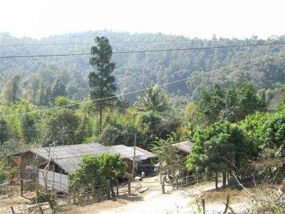 village2__Medium_.jpg