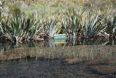 mirror_lakes_sign.jpg