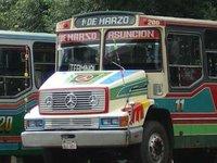 Paraguayan Buses