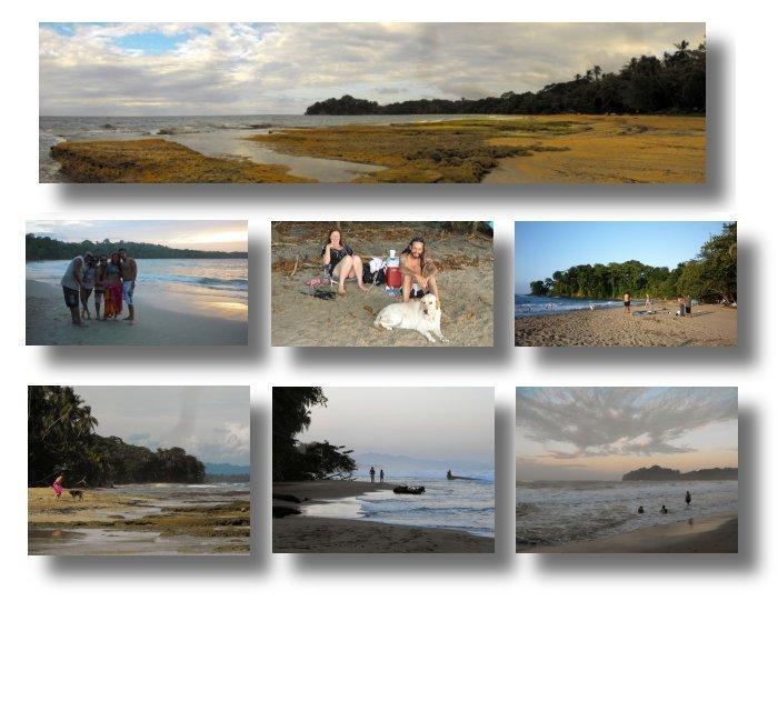 large_BeachComp04.jpg