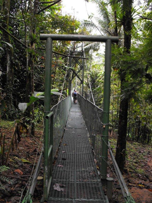 SARAPIQUI suspension bridge over the Sarapiqui river