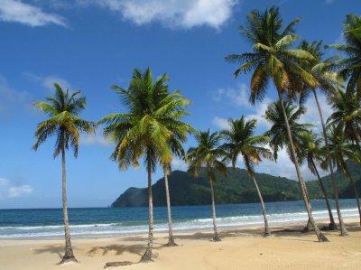 trinidad__4_.jpg
