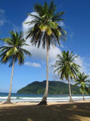 trinidad__7_.jpg