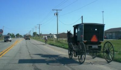 Amish_Bugg..oadside.jpg