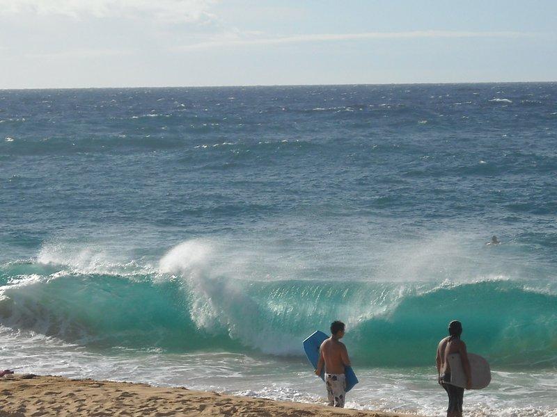 Hawaii Trip for the traveldatingnetwork.com