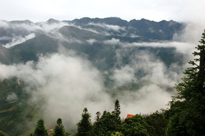 Sapa in Fog