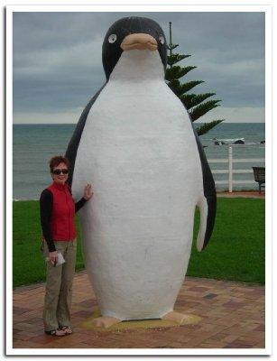0R___Penguin__Penguin.jpg