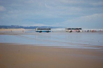 Buses_On_9..e_Beach.jpg