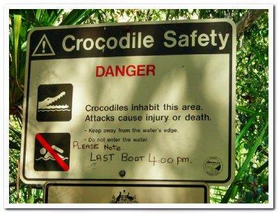 Crocodile_Safety.jpg